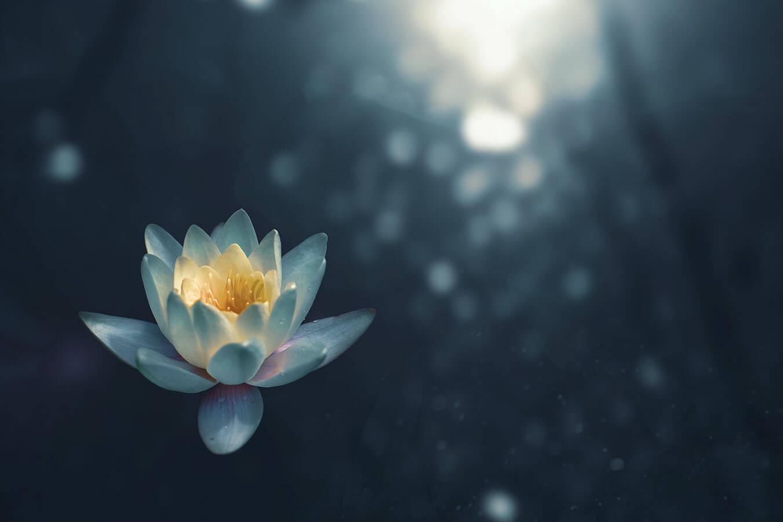 medytacja rodzaje i sposoby